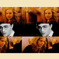 None of the others - harry-and-hermione fan art