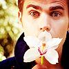 http://images5.fanpop.com/image/photos/30800000/Paul-Wesley-Mr-Porter-paul-wesley-30858986-100-100.png
