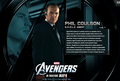 Phil Coulson - the-avengers photo