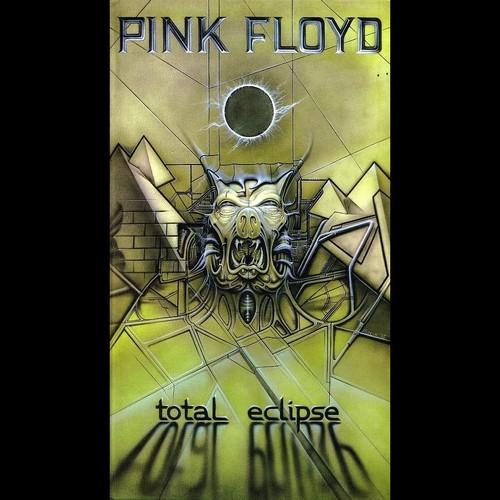 rosa, -de-rosa Floyd - fotografias