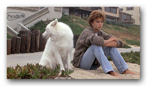 "The Thorn Birds wallpaper called Rachel Ward in ""Against all odds"""