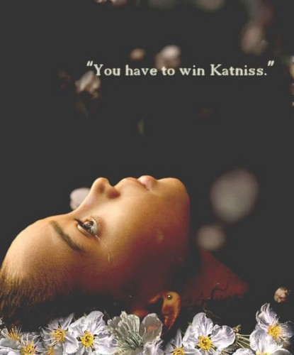 "Rue - ""You have to win, Katniss.""  - the-hunger-games Photo"