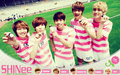 SHINee Etude - shinee wallpaper