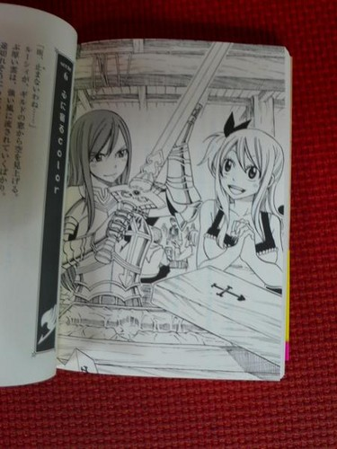 Scenes from Fairy Tail's 1st Light Novel