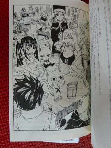 Scenes from Fairy Tail's 1st Light Novel