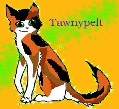 Tawnypelt
