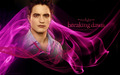 Twilight Saga - Fan Art - twilight-series fan art