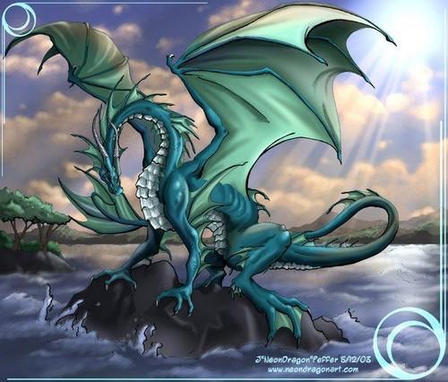 WATER DRAGON!!!:D