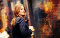 always  - castle-and-beckett wallpaper