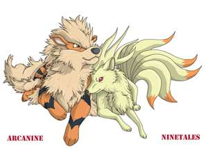 arcanine & ninetails