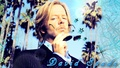 david spade wallpaper (made by me) - david-spade wallpaper