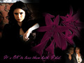 katherine-pierce - katherine wallpaper