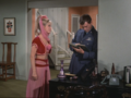 my master, napoleon's buddy - i-dream-of-jeannie photo