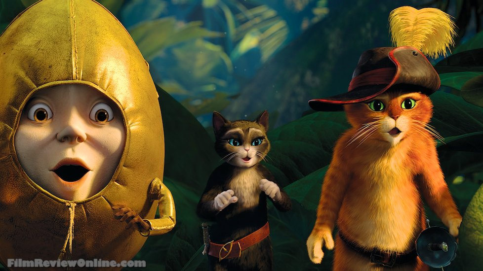http://images5.fanpop.com/image/photos/30800000/puss-in-boots-the-movie-puss-in-boots-the-movie-2011-30845218-978-550.jpg
