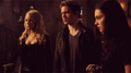 tsc 1x05 slitherღ - the-secret-circle-tv-show photo