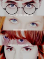 ~Harry, Ginny, Ron, & Hermione~