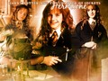 hermione-granger - ~Hermione Granger~ wallpaper