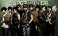 **Super Junior** - ktjpop wallpaper