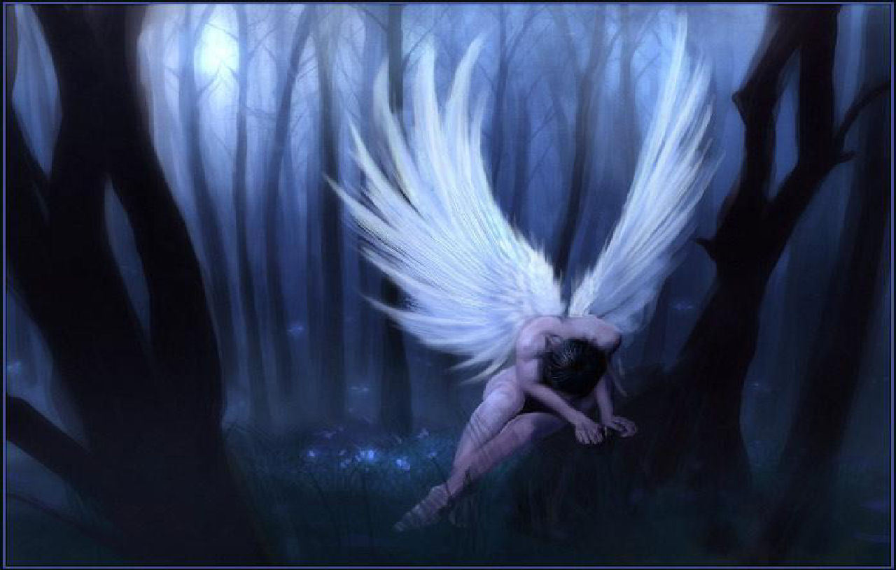 Angels And Fairies Images Angels Hd Wallpaper And