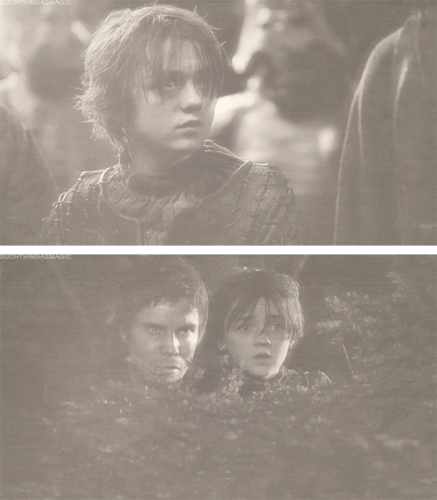 Arya and Gendry images Arya ღ Gendry wallpaper and background photos