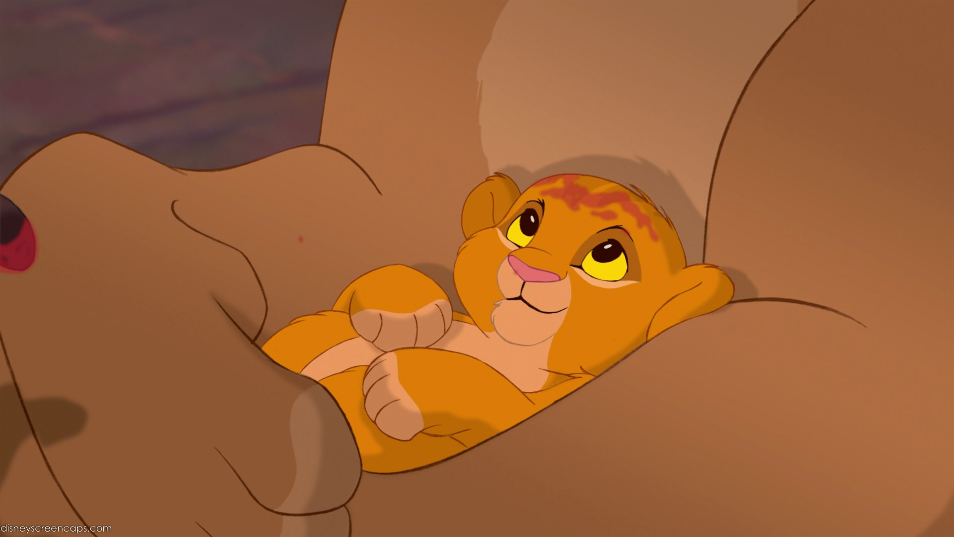 The Lion King images Baby Simba HD wallpaper and ...