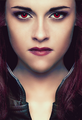 Bella Swan - Breaking Dawn Part 2 - twilight-series photo