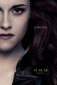 Breaking Dawn part 2 official character poster: Bella Cullen - harry-potter-vs-twilight photo
