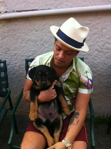 Bruno Mars and his dog Geronimo