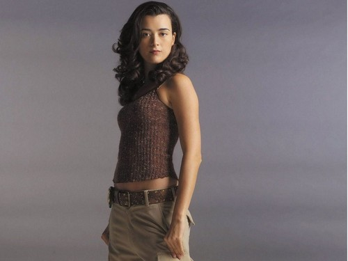 cote de pablo wallpaper entitled Cote de Pablo wallpaper