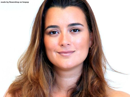 Коте де Пабло Обои containing a portrait called Cote de Pablo Обои