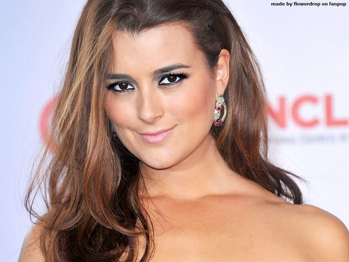 Cote de Pablo پیپر وال containing a portrait, attractiveness, and skin titled Cote de Pablo پیپر وال