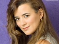 Cote de Pablo Wallpaper - cote-de-pablo wallpaper