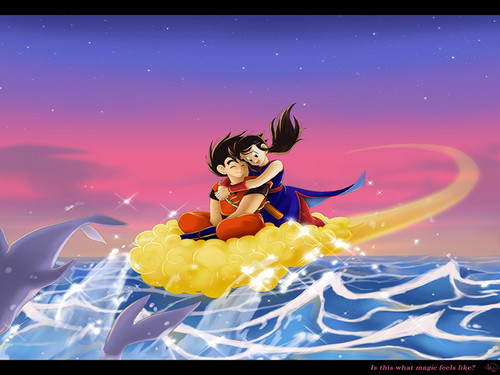 DBZ_Goku_and_ChiChi