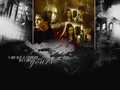 Yours - damon-and-elena wallpaper