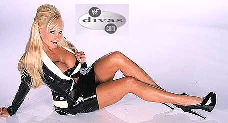 Former WWE Diva... Debra پیپر وال containing attractiveness and tights entitled Debra