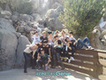 EXO-M & EXO-K at Disney Land
