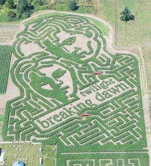 Edward & Bella Maze
