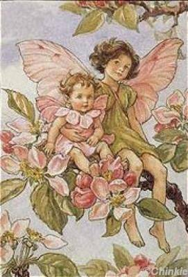 Fairies for my Friend - yorkshire_rose Photo