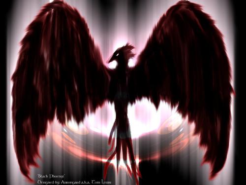 Fallen Black Phoenix