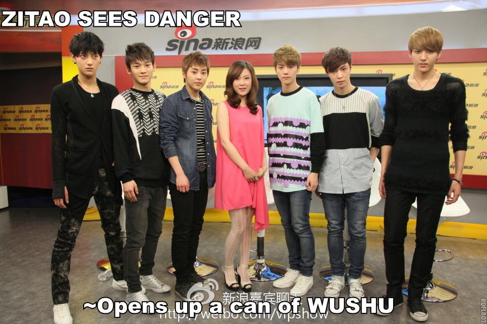 Funny Tao wushu