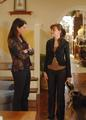 Gilmore Girls - gilmore-girls photo
