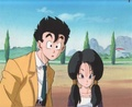 Gohan & Videl - gohan-and-videl photo