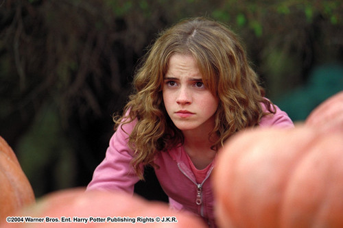 Hermione in the Prisoner of Azkaban