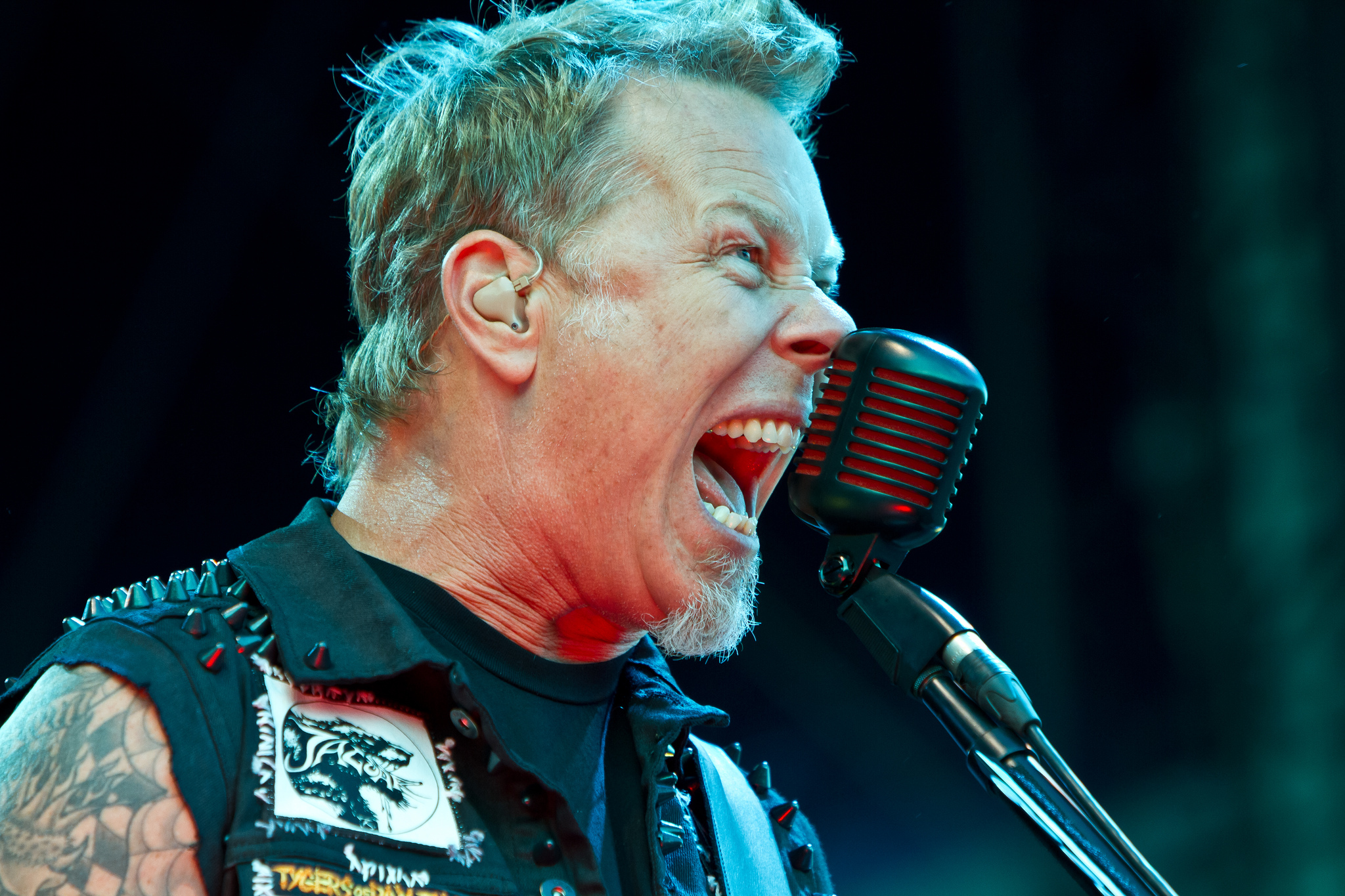 james hetfield james hetfield photo 30975468 fanpop. Black Bedroom Furniture Sets. Home Design Ideas