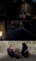 Jane & Lisbon [Love]