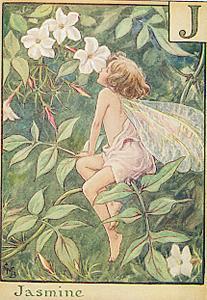 melati Fairy