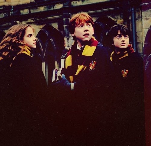 harry potter fangirl - photo #9