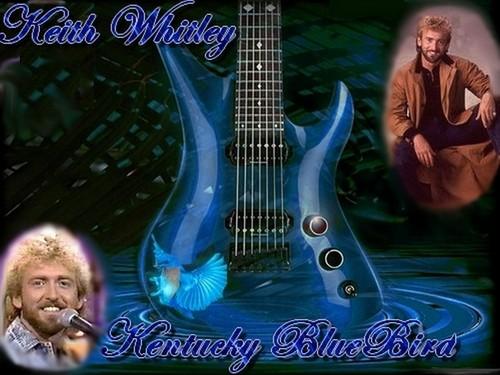 Kentucky rotkehlhüttensänger, drossel, bluebird