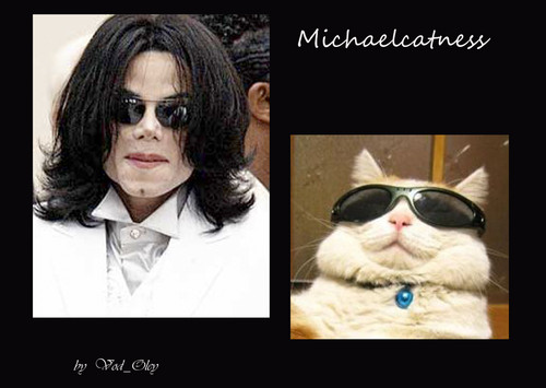 Michaelcatness
