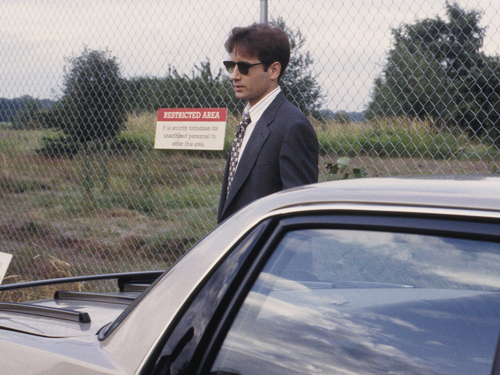 The X-Files wallpaper containing a chainlink fence and a business suit entitled Mulder